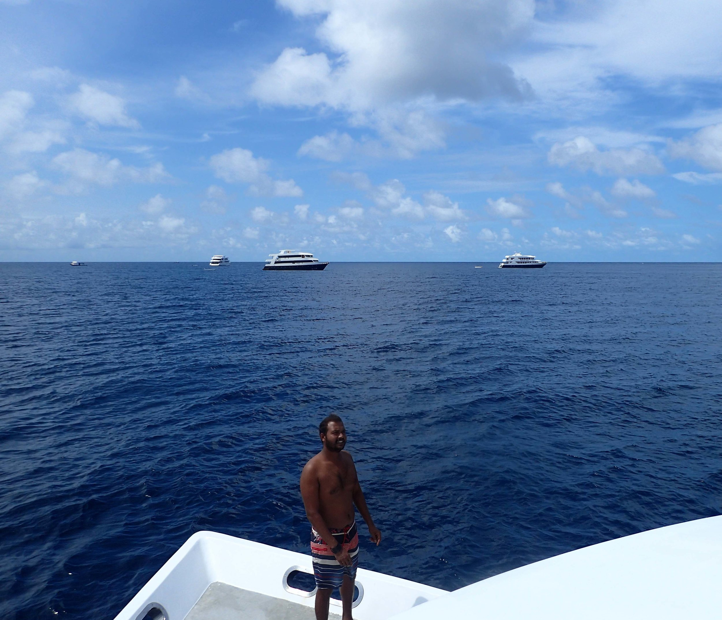 looking for whale sharks.jpg