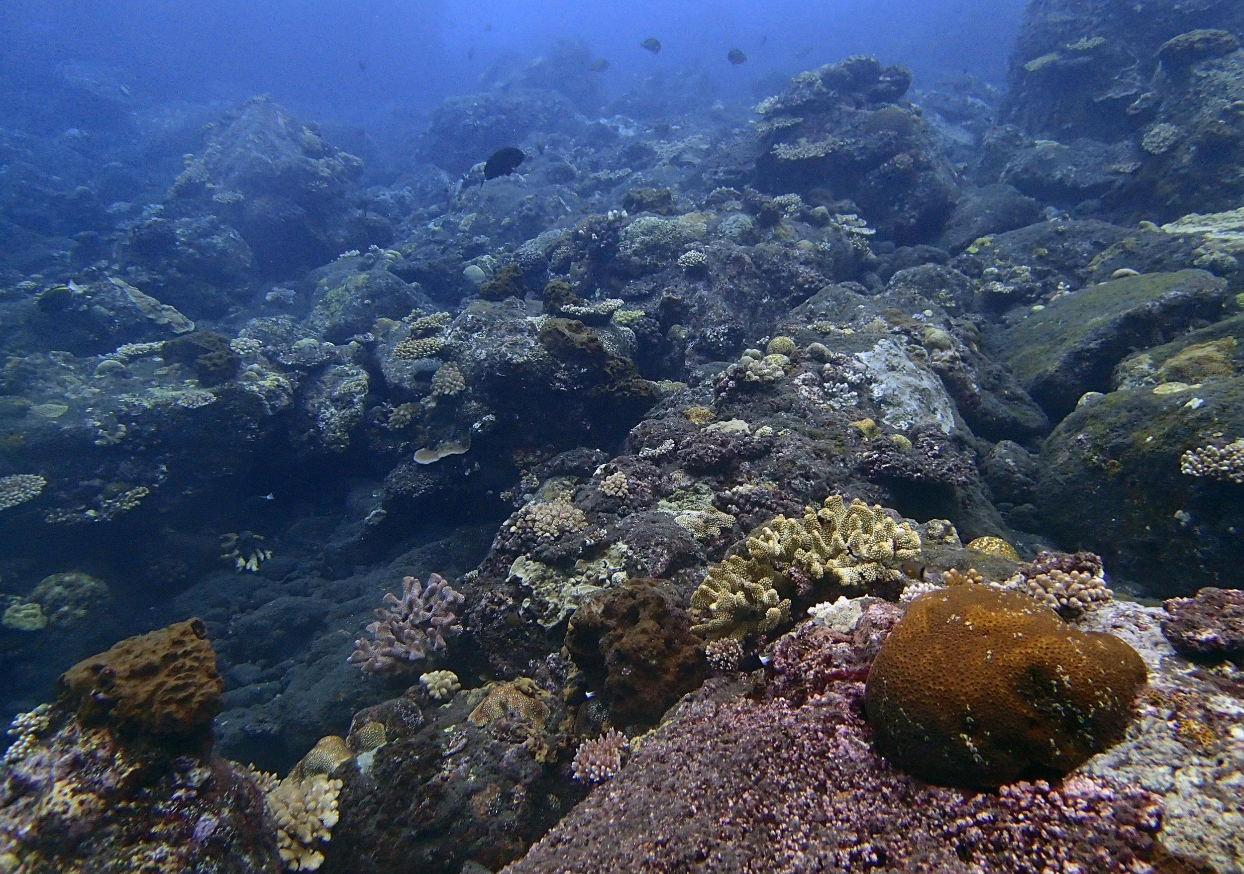 Tinakula volcano underwater.jpg