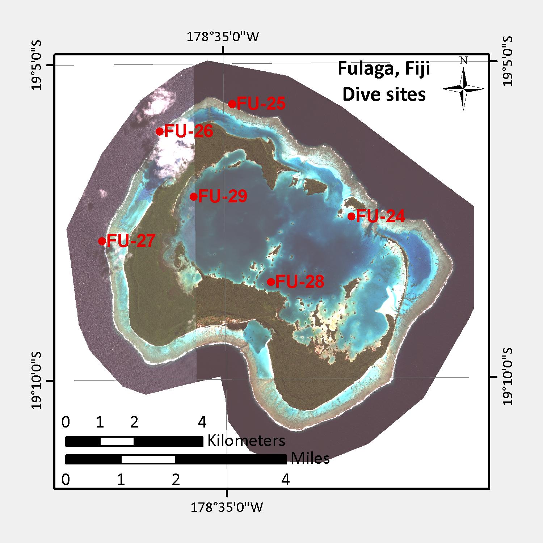 Two days were spent surveying Fulaga's gorgeous reefs.
