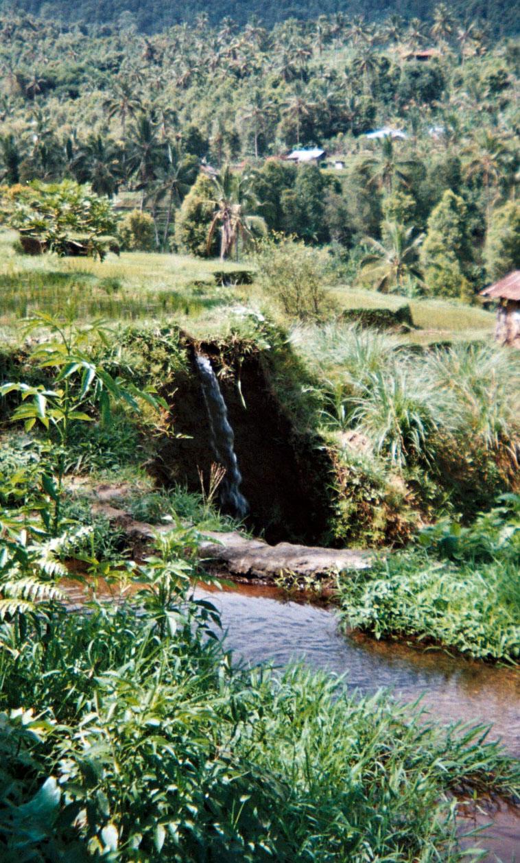 Bali central mountains.jpg