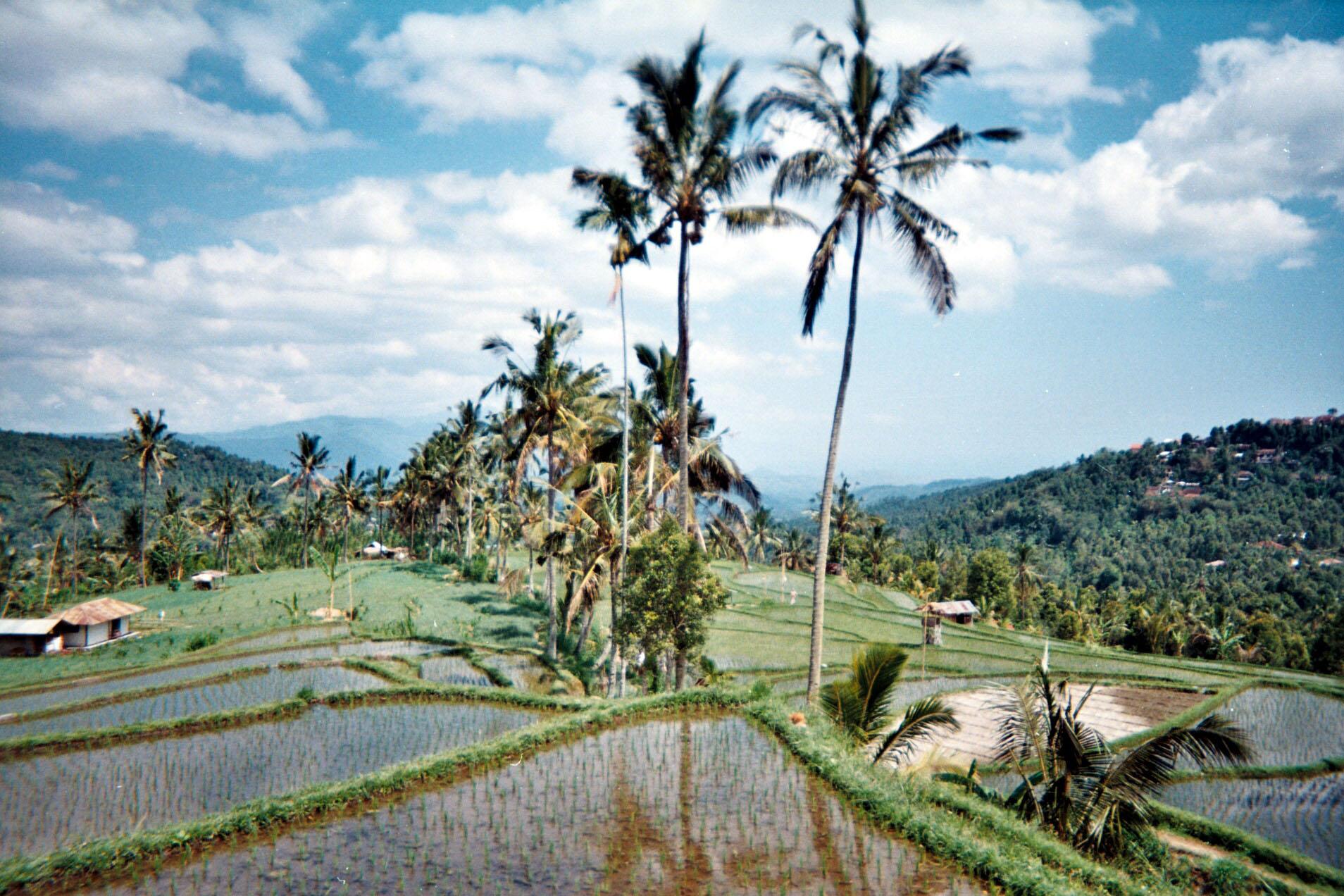 Munduk Bali.jpg