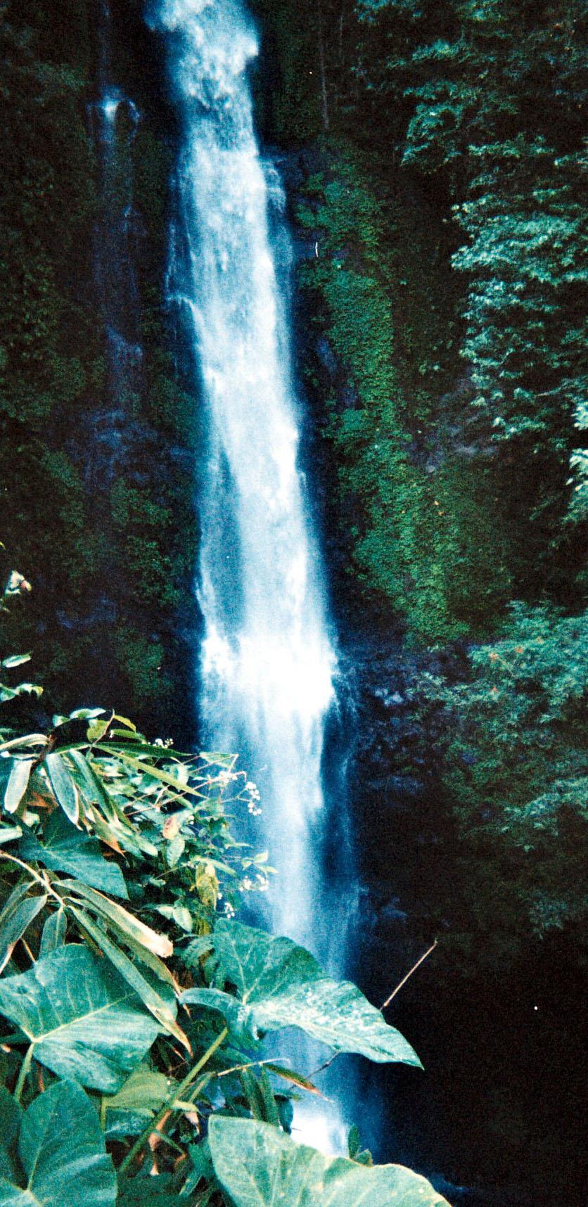 Munduk waterfall hike.jpg