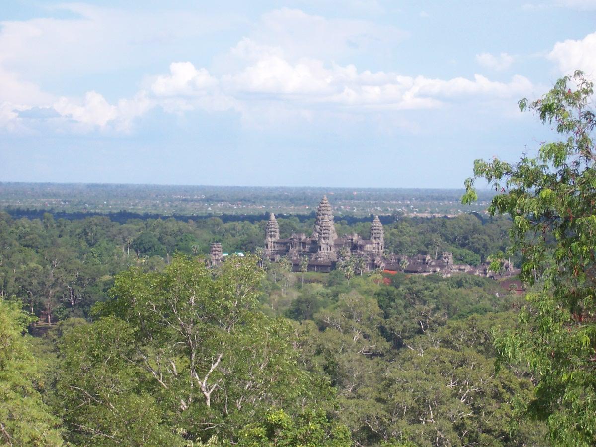 angkor treetops.jpg
