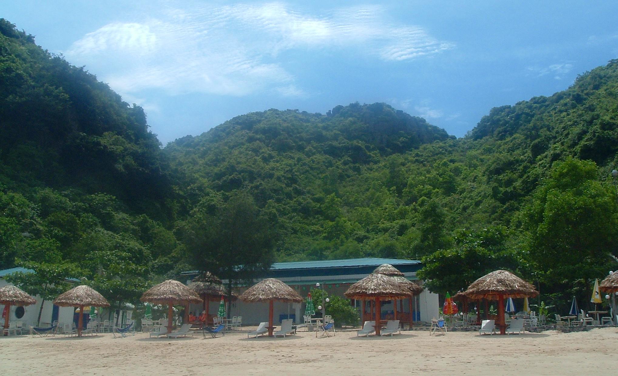 catco beach 2.JPG