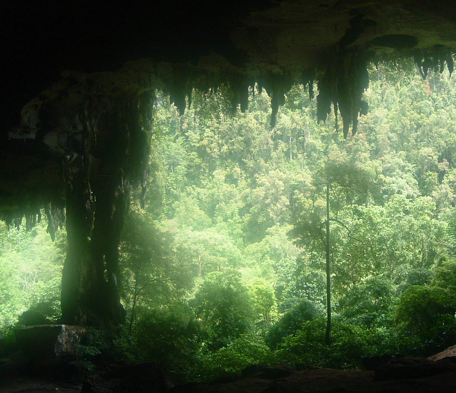 niah caves national park.JPG