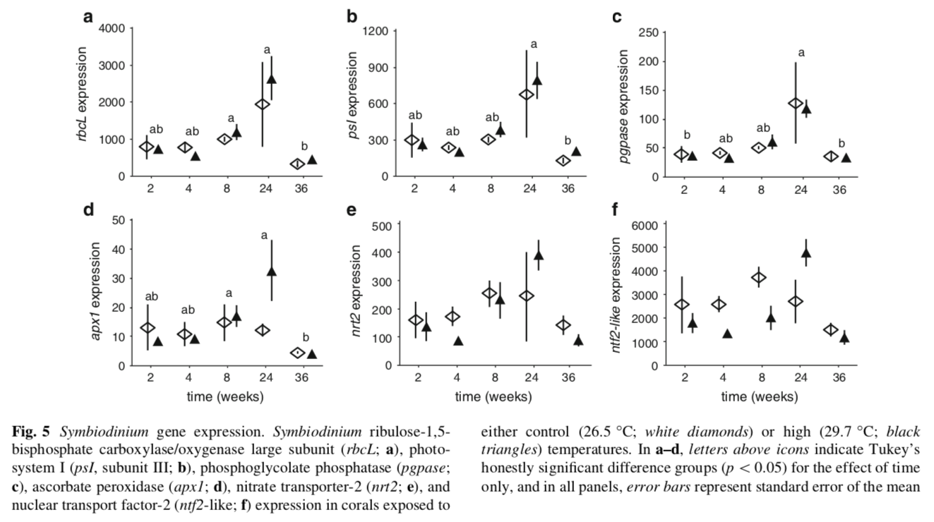 Expression of six  Symbiodinium  candidate genes; as you can see, there were no treatment effects, only temporal ones (likely due to variability in the light environment).
