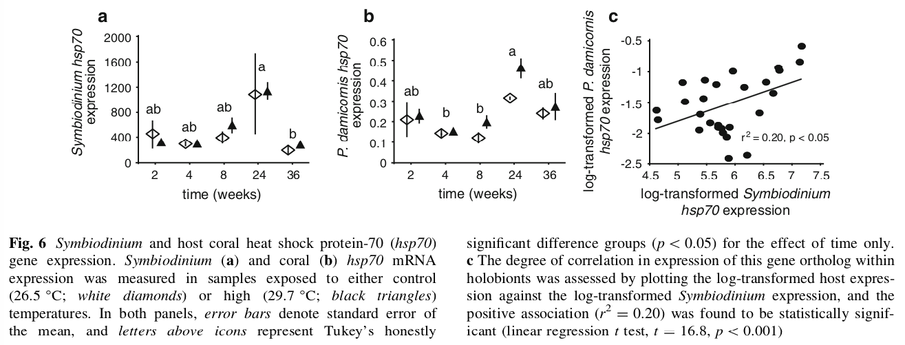 Modest correlation between host coral and  Symbiodinium hsp70  mRNA expression.