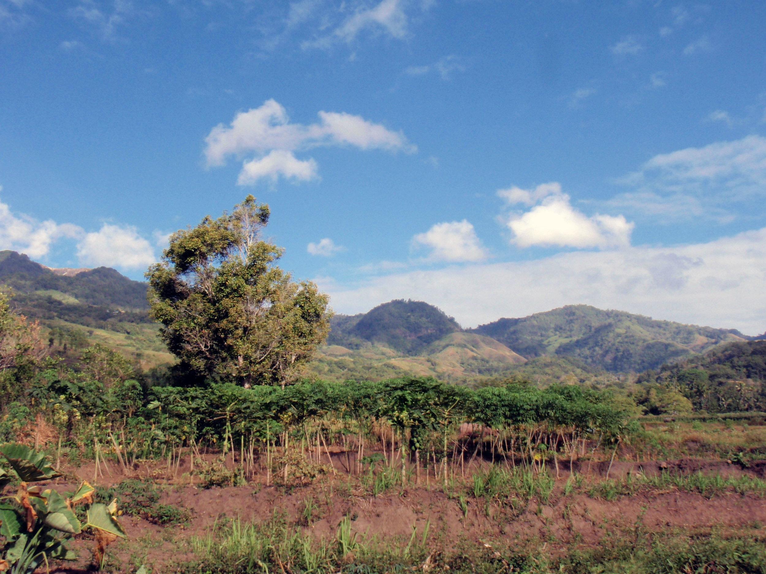 Moni countryside.jpg