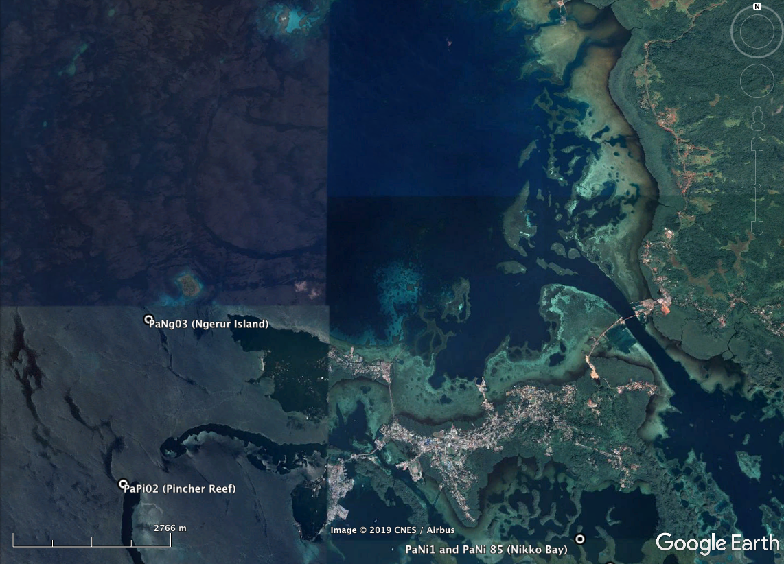High-resolution habitat maps will be available on the Living Oceans Foundation's world reef map  website  in late 2019. As evident from the first picture below, pH, temperature, and light loggers were deployed at this site for a number of days.
