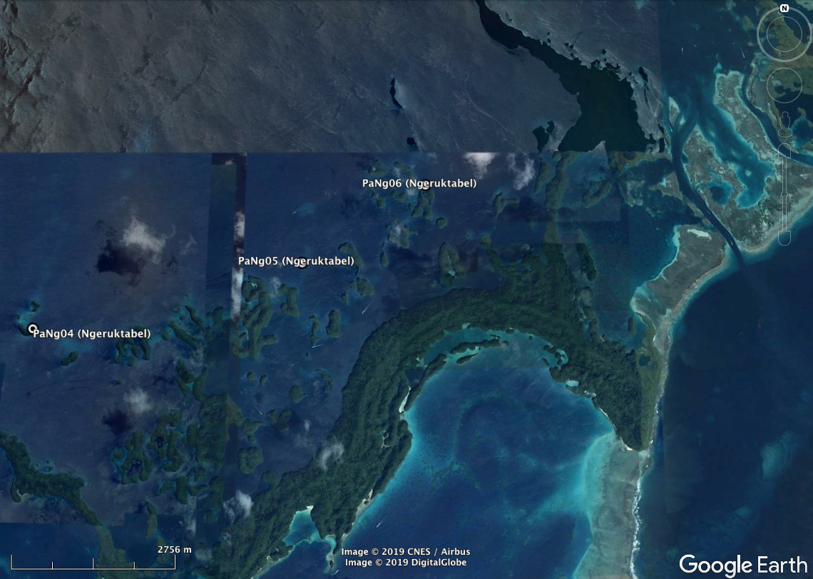 High-resolution habitat maps will be available on the Living Oceans Foundation's world reef map  website  in late 2019.