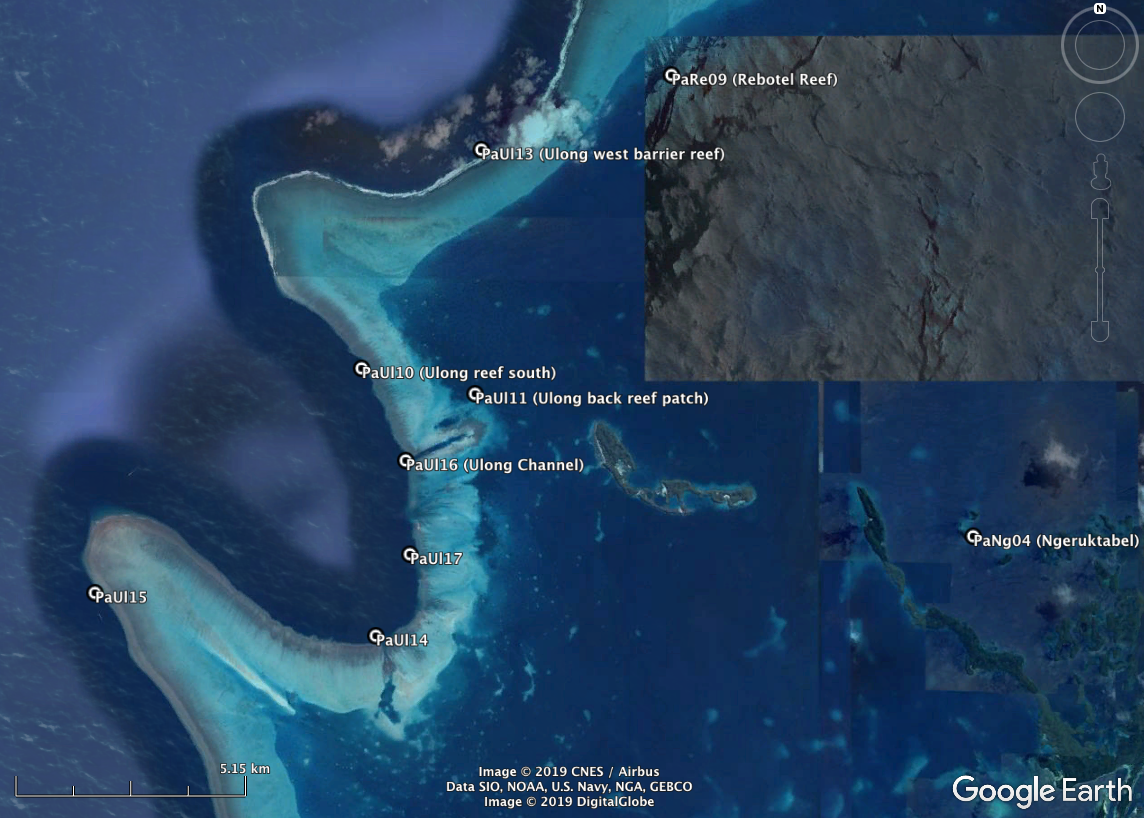 "Exact GPS coordinates can be found in the data files posted on "" Palau overview ."" High-resolution habitat maps will be available on the Living Oceans Foundation's world reef map  website  in late 2019."