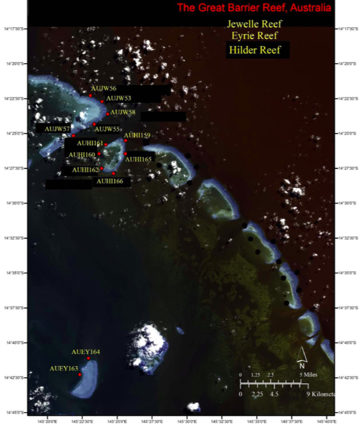 High-resolution habitat maps will be posted on the Living Oceans Foundation's excellent world reef map  website  in late 2019.