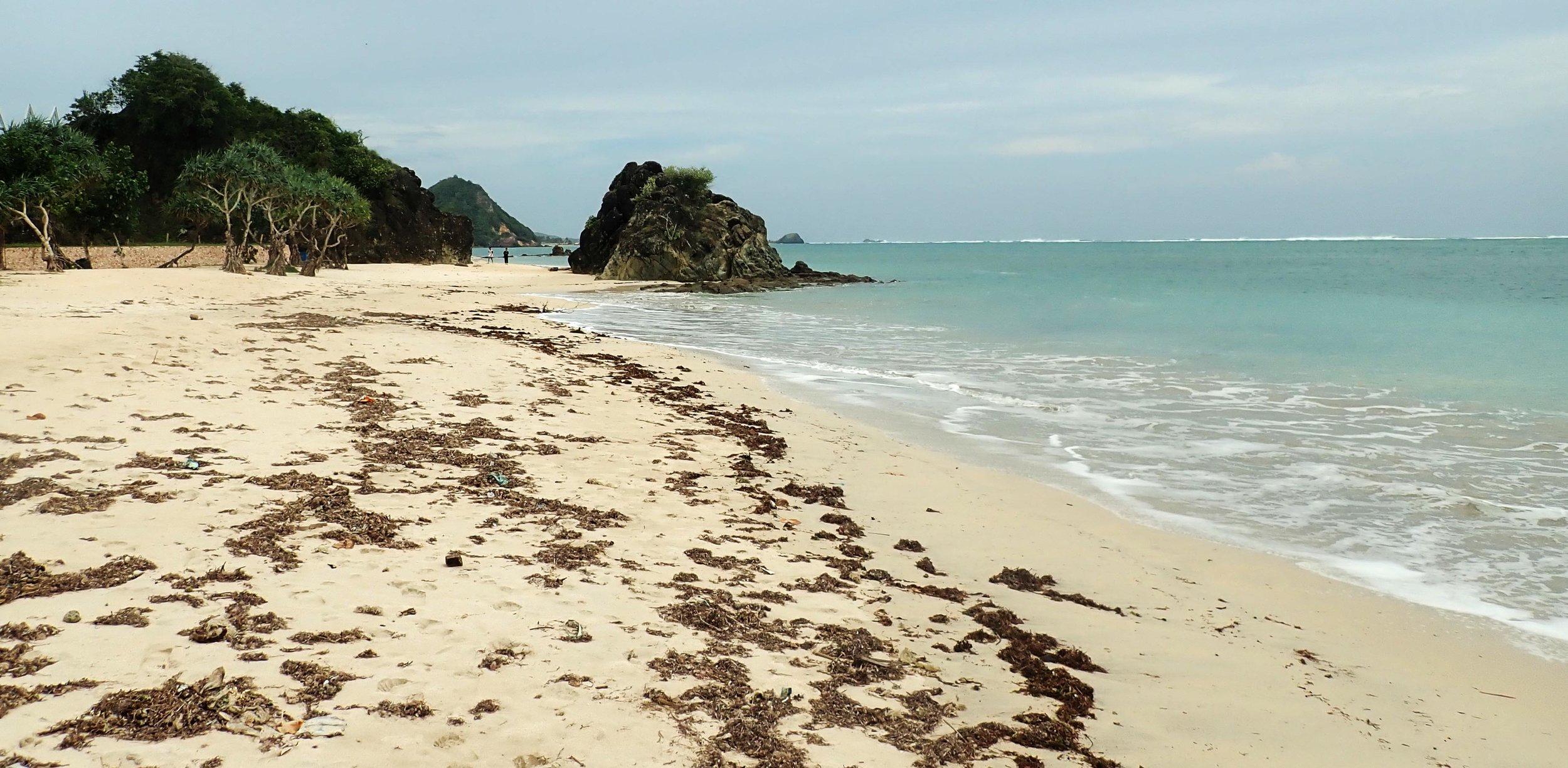 Kuta Beach Lombok.jpg