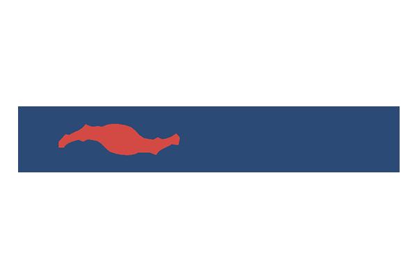 Pioneers_Logo_Web.png