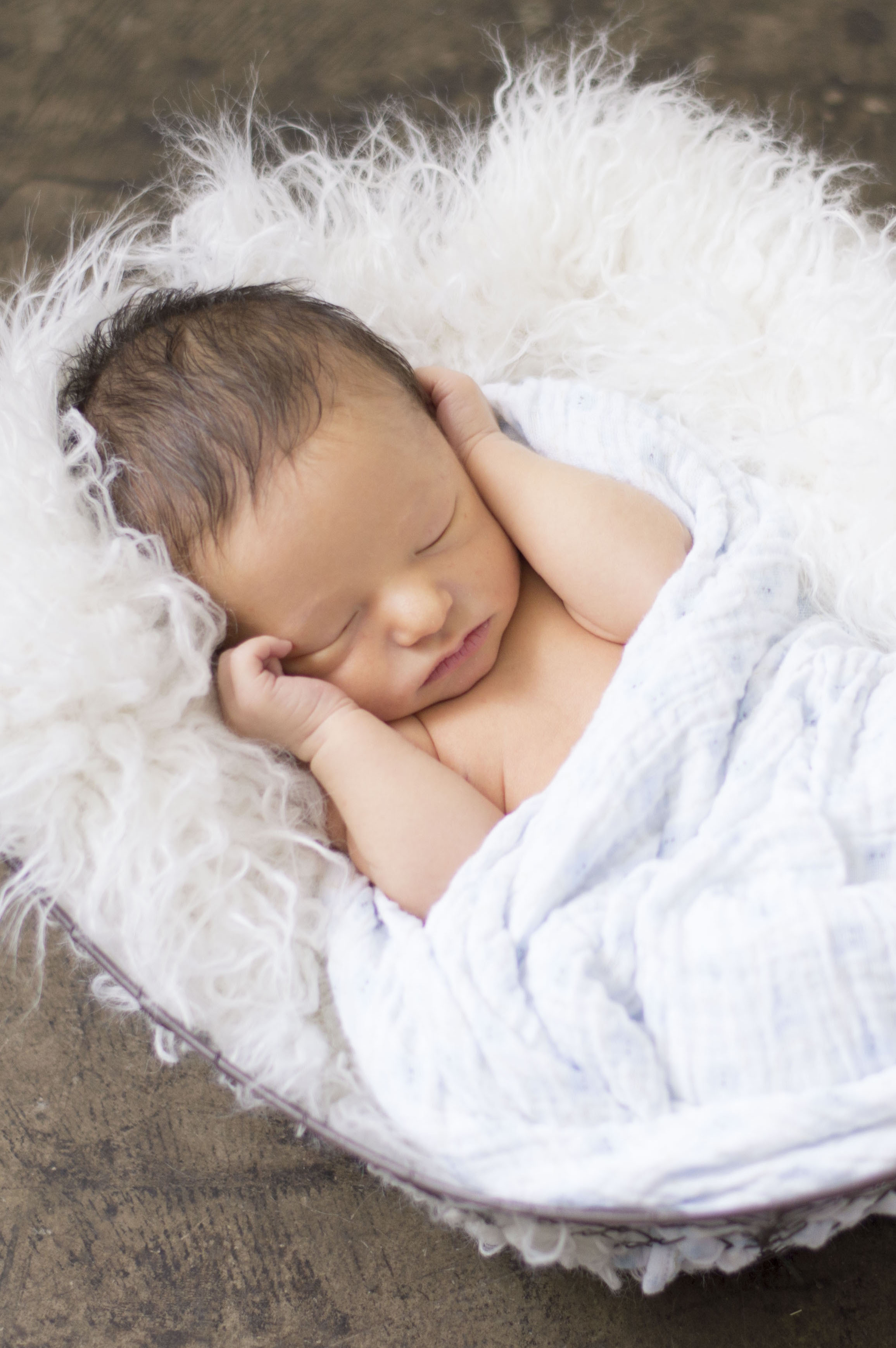 phoenix-newborn-photography