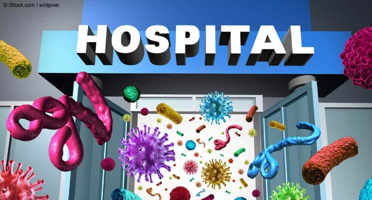 CB-HOSPITAL BUGS.jpg