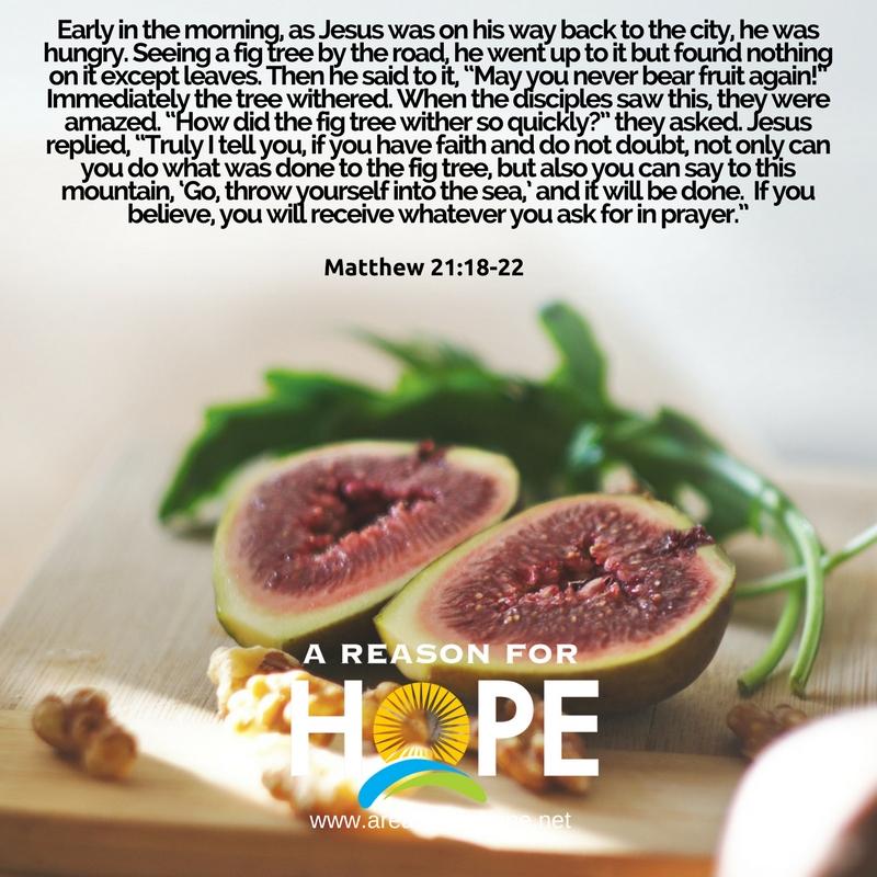 Matthew 21_18-22.jpg