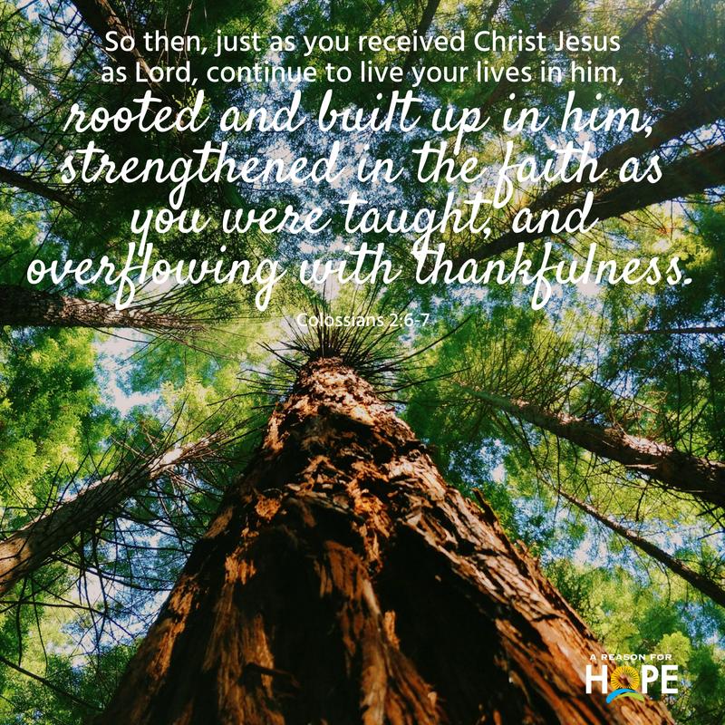 Colossians 2_6-7.jpg