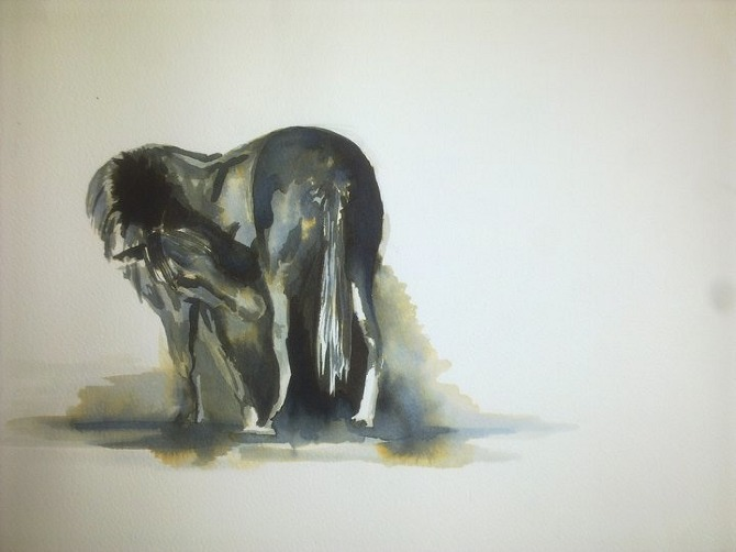 inky horse.jpg