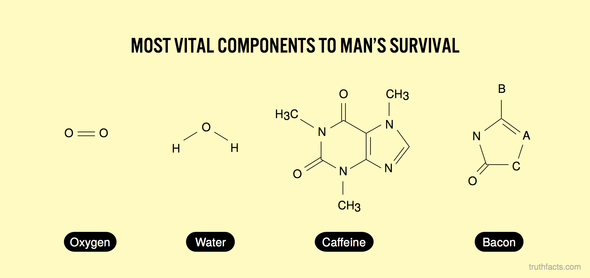 Most vital components to man's survival