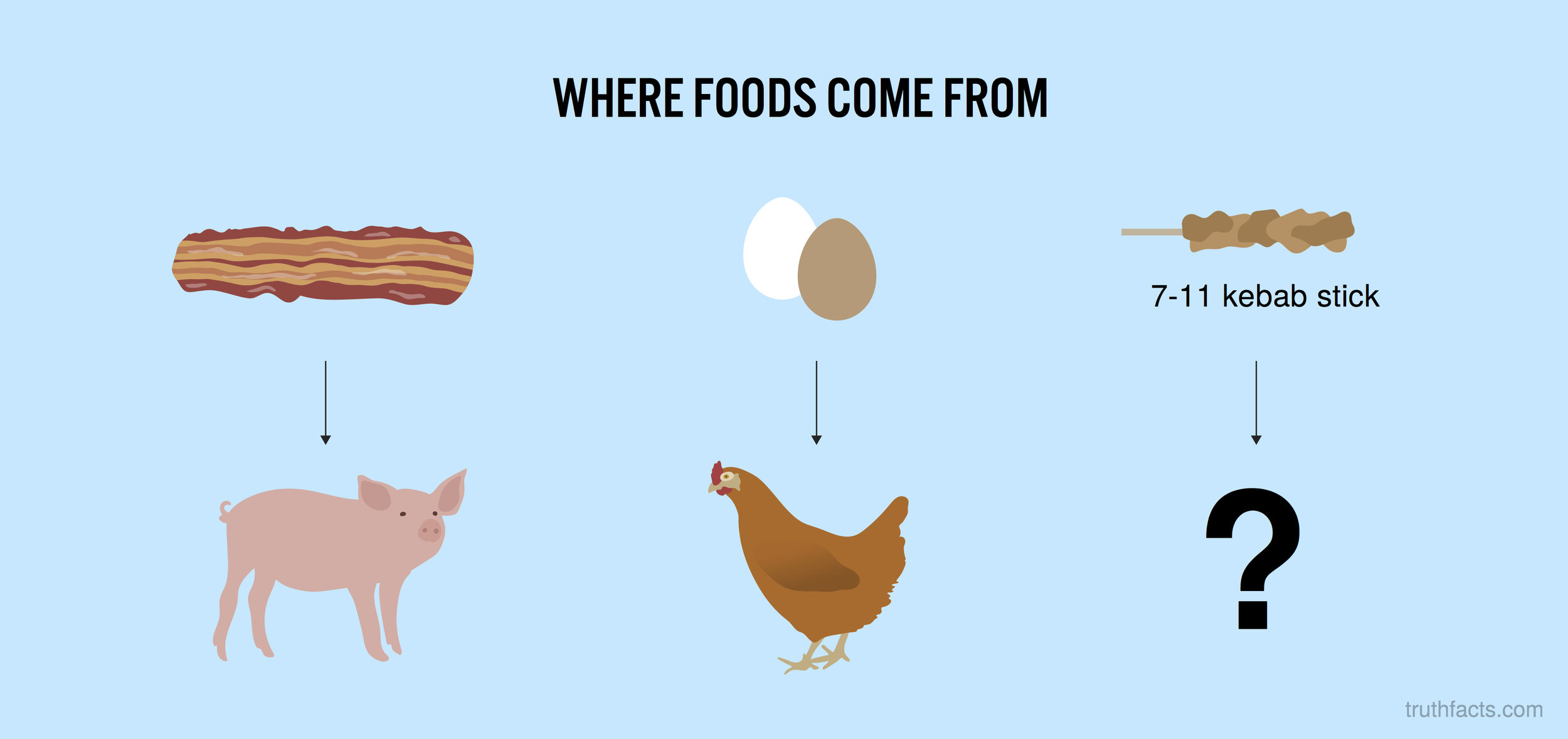 Where foods come from