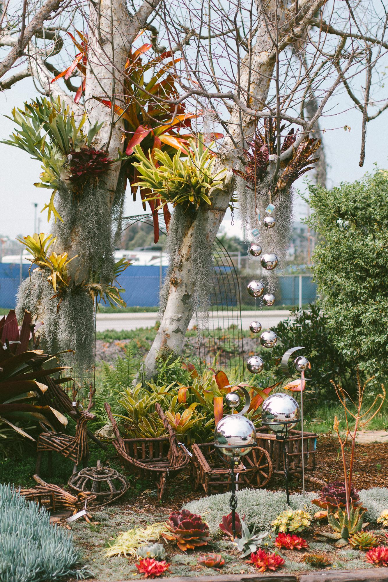 marina del rey garden center 4
