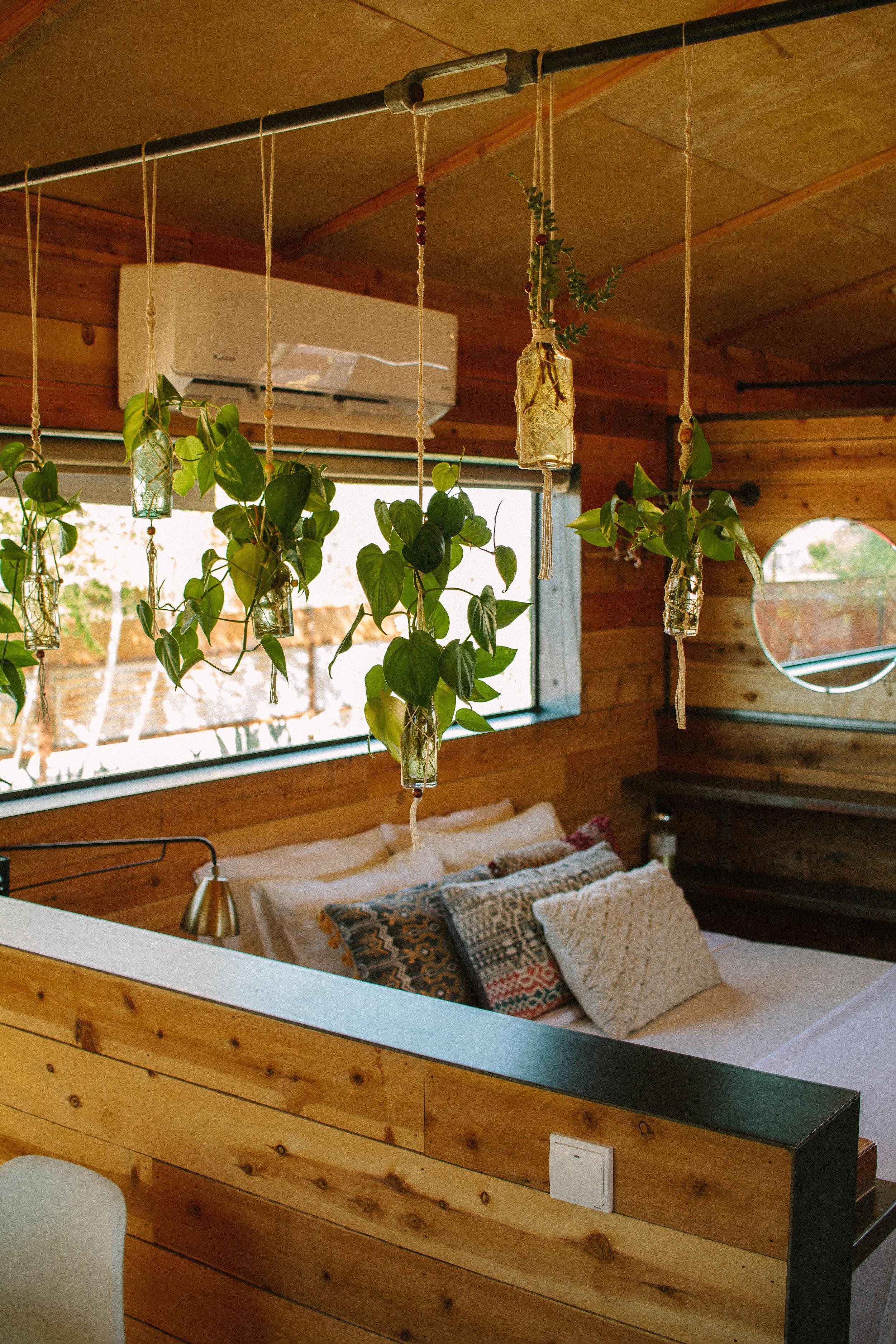casa de agave 3