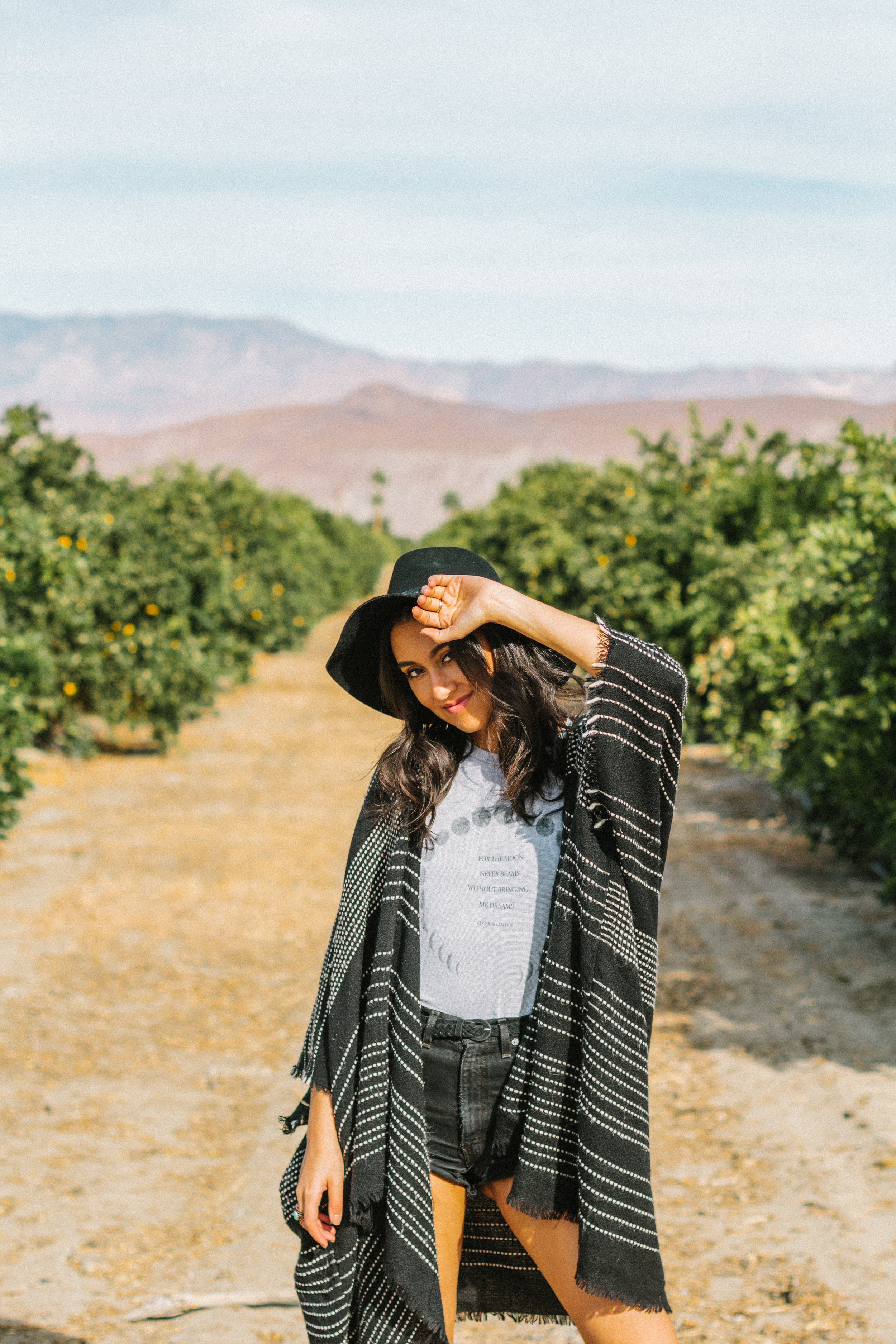 borrego springs orange orchard