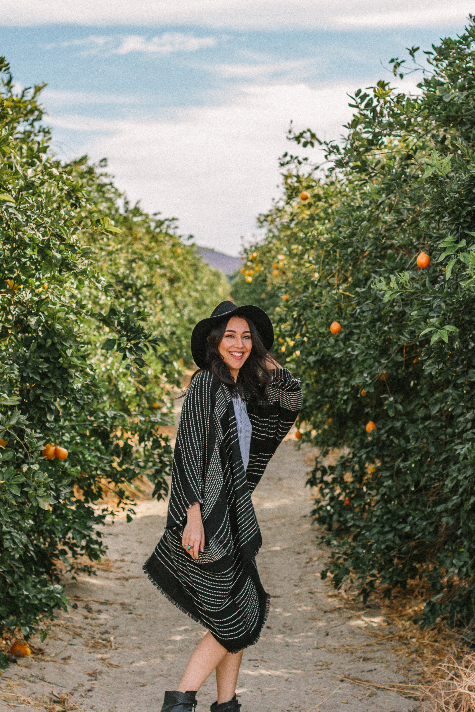 borrego springs orange orchard 3