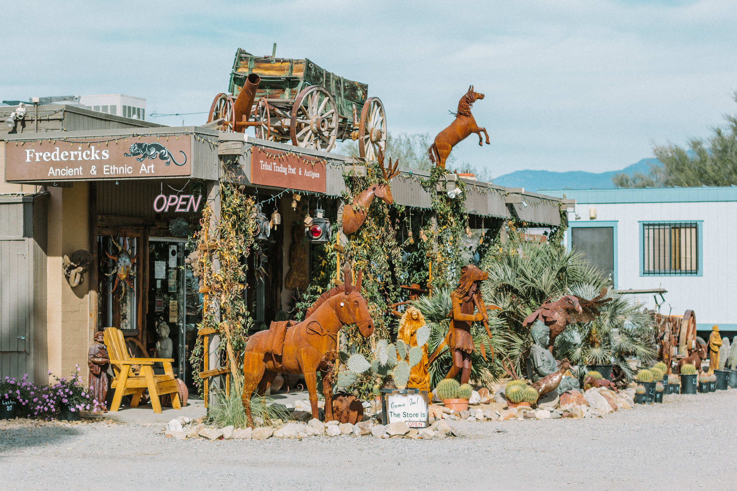 things to do borrego springs 2