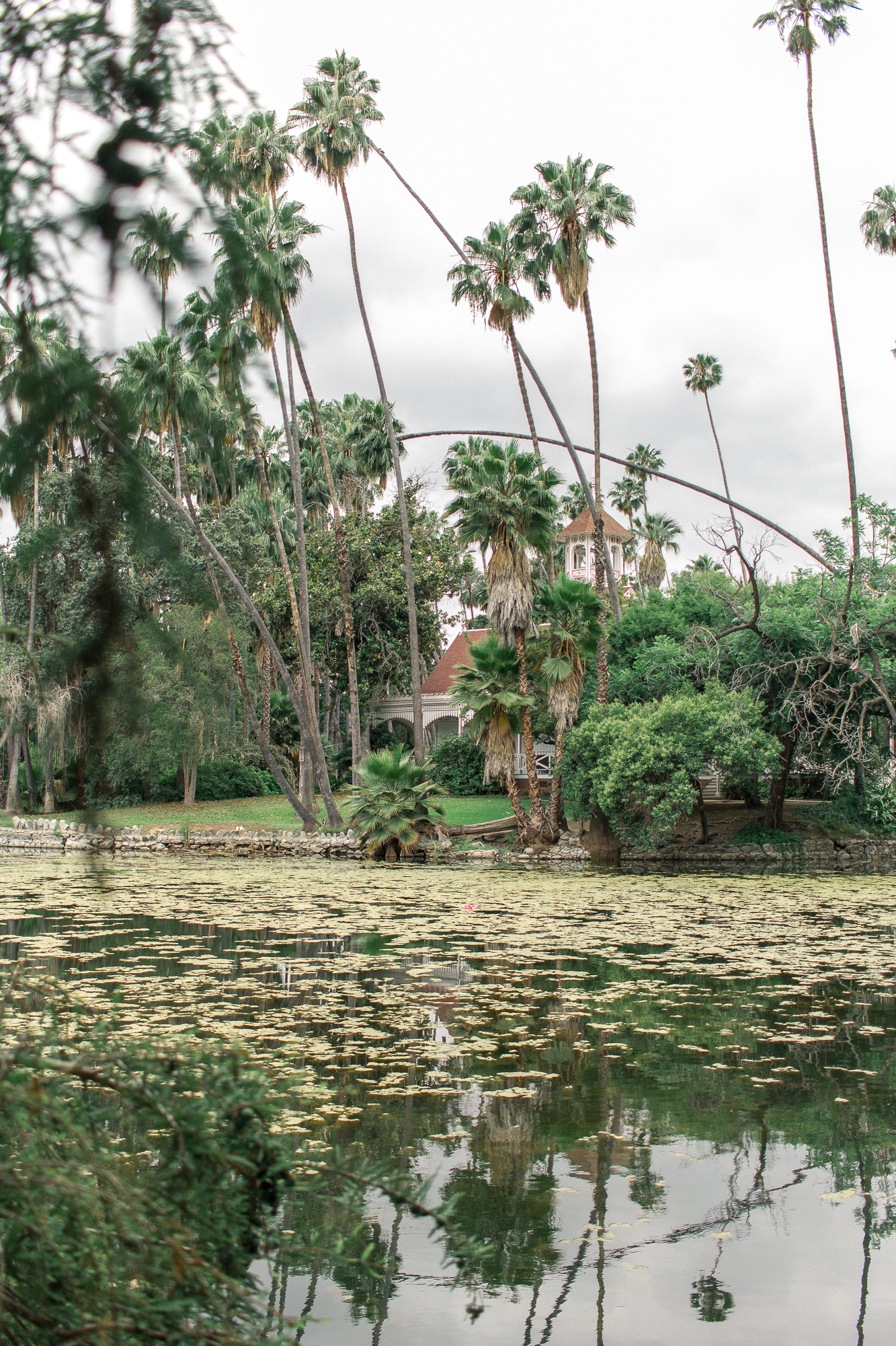 la arboretum 11