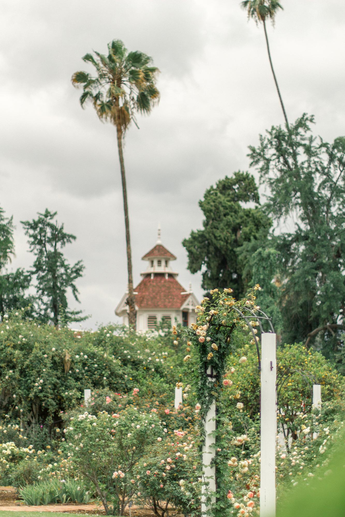 la arboretum rose garden 18