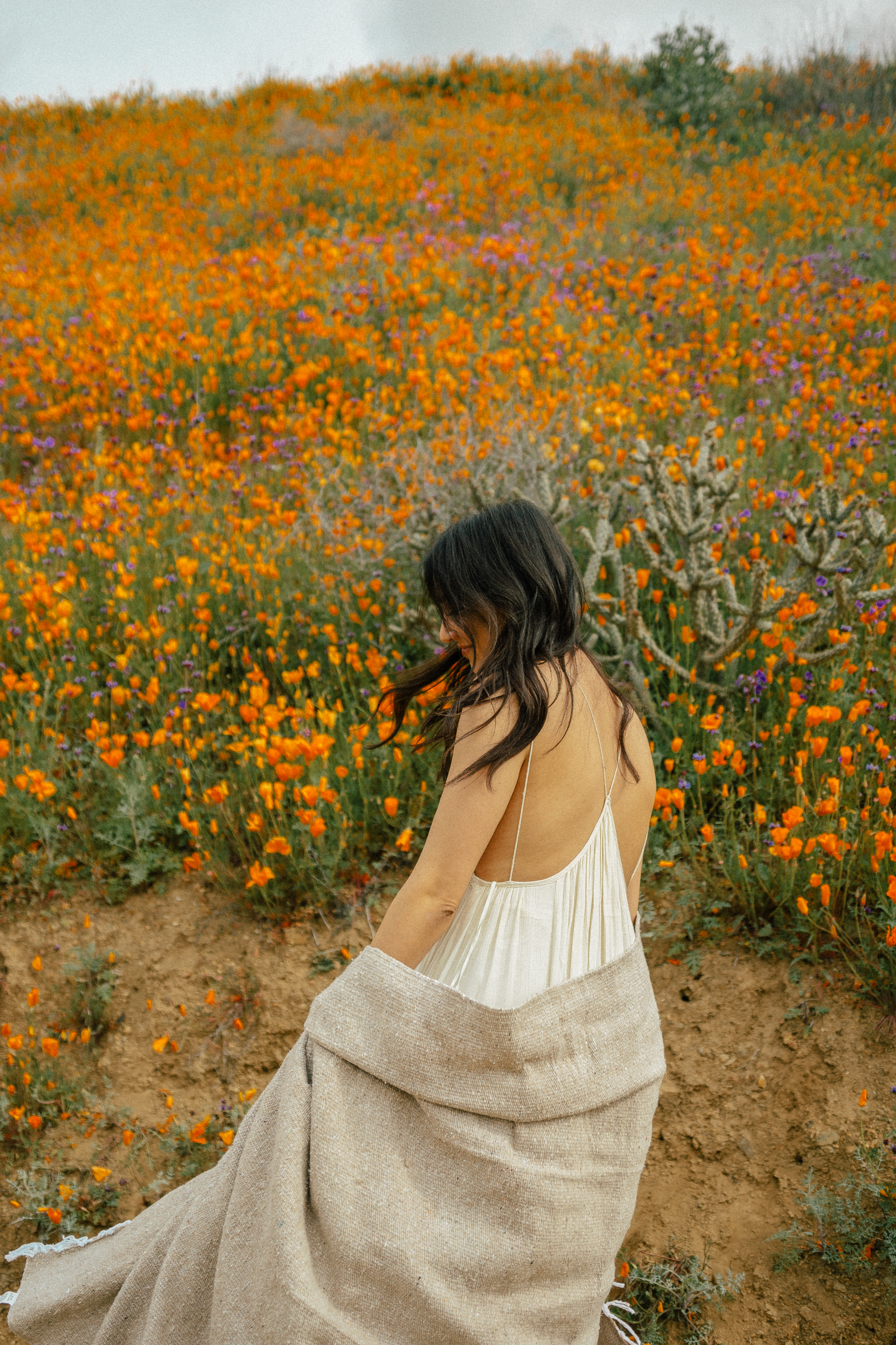 poppy fields california superbloom 10
