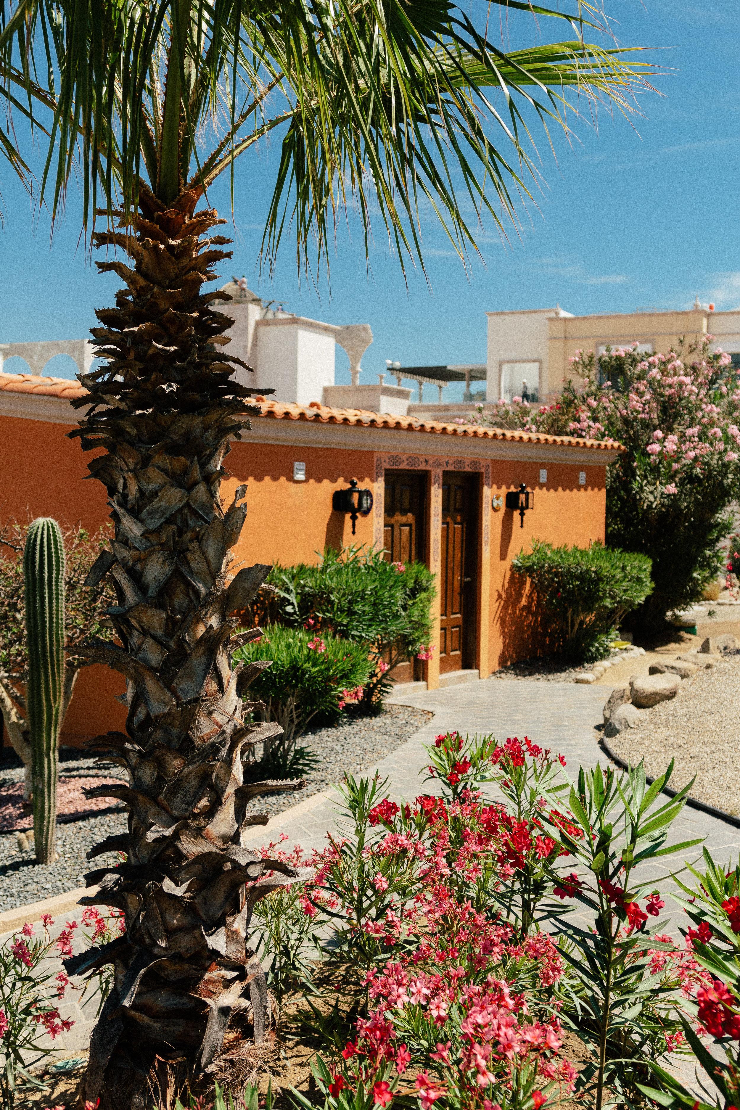 Hacienda Encantada Los Cabos Resort 16