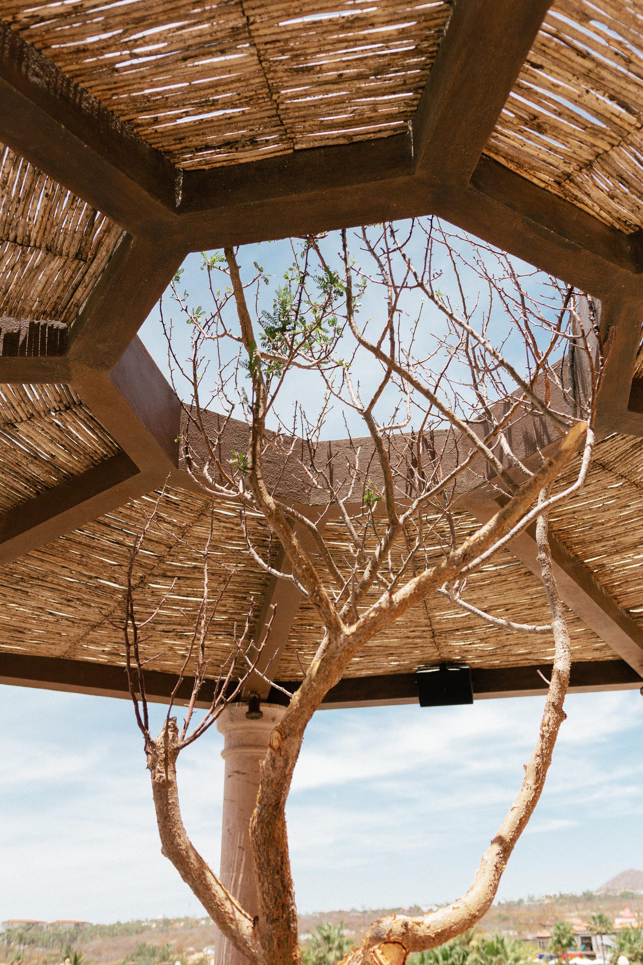 Hacienda Encantada Los Cabos Resort 22