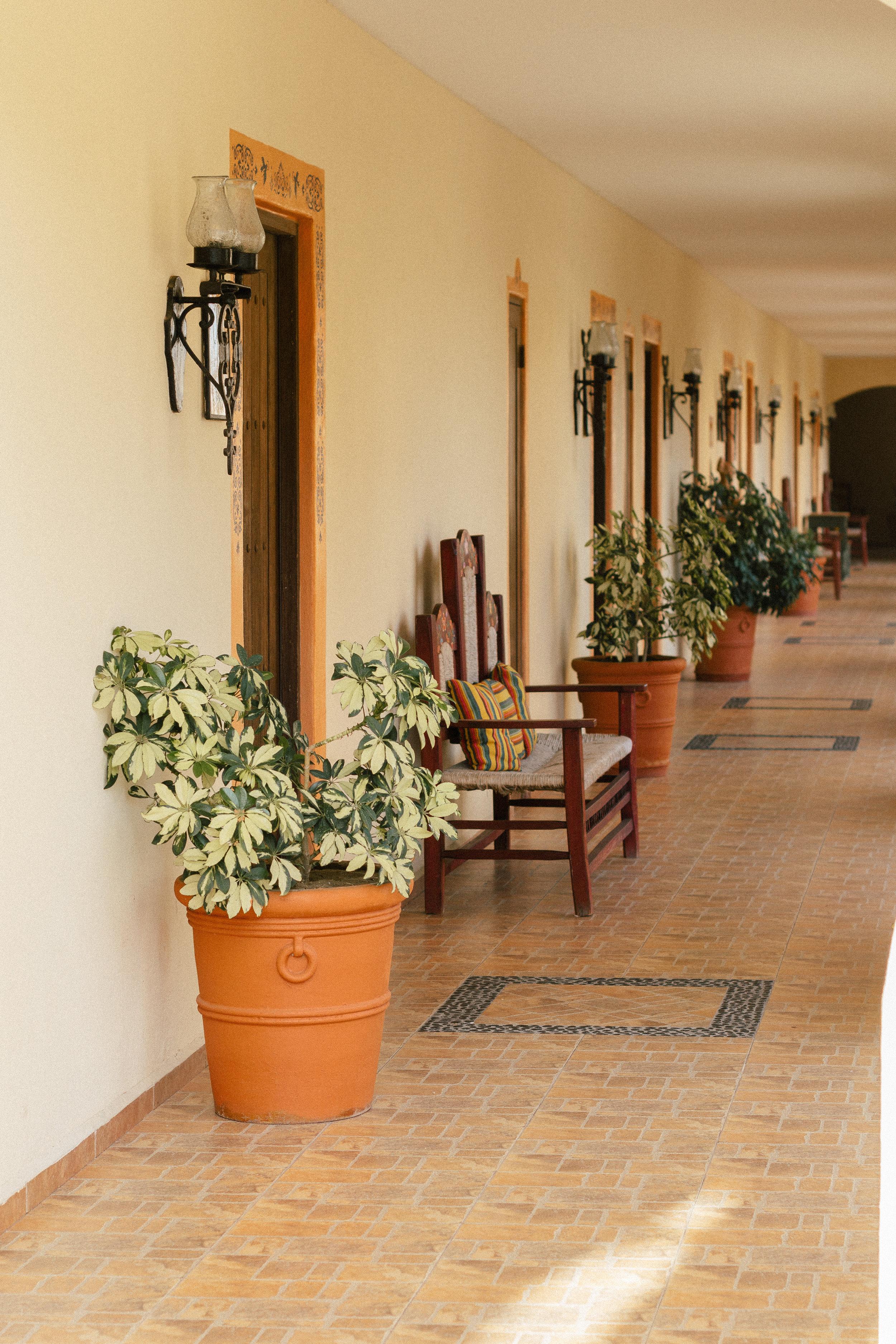 Hacienda Encantada Los Cabos Resort 31