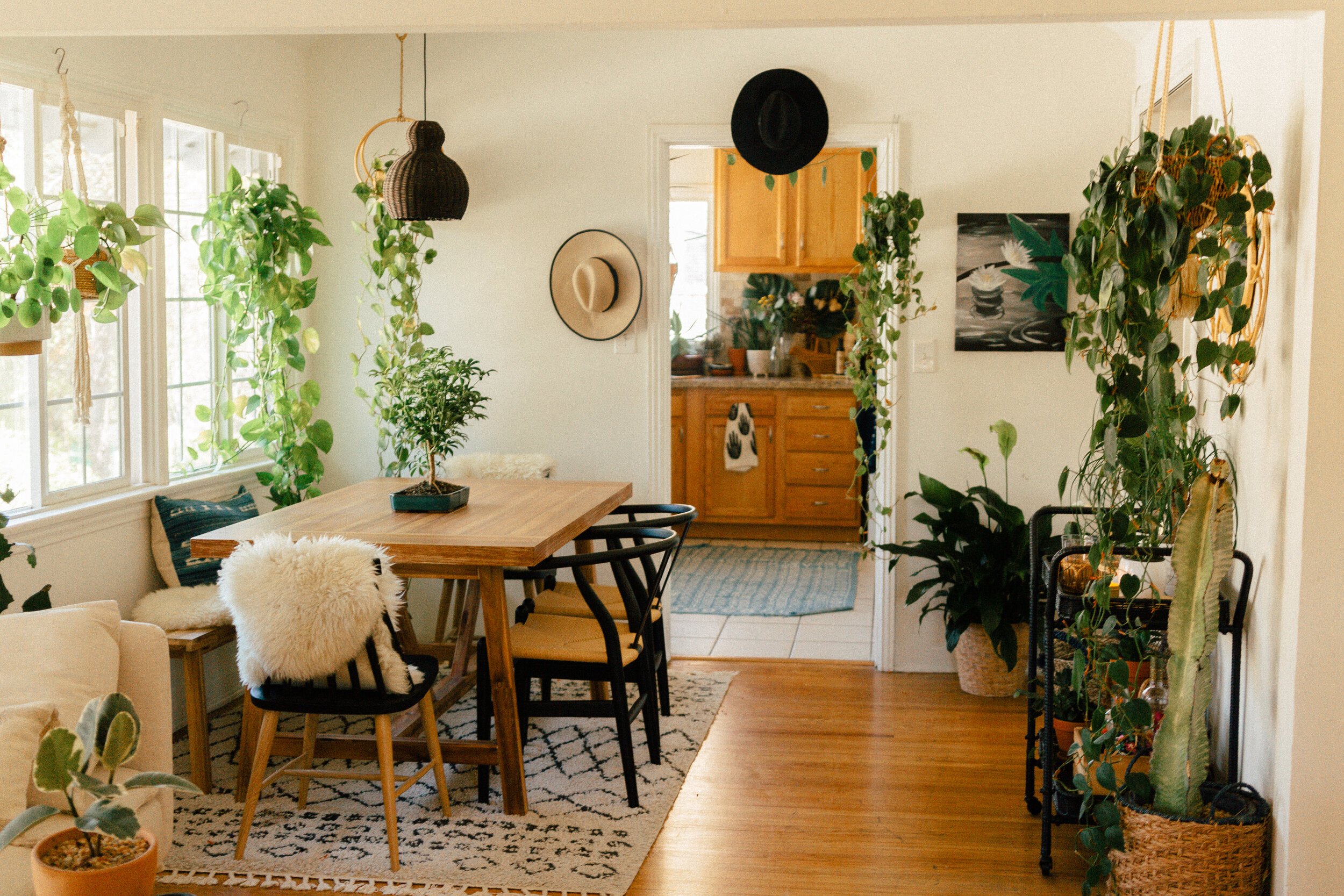 dining room oasis 2