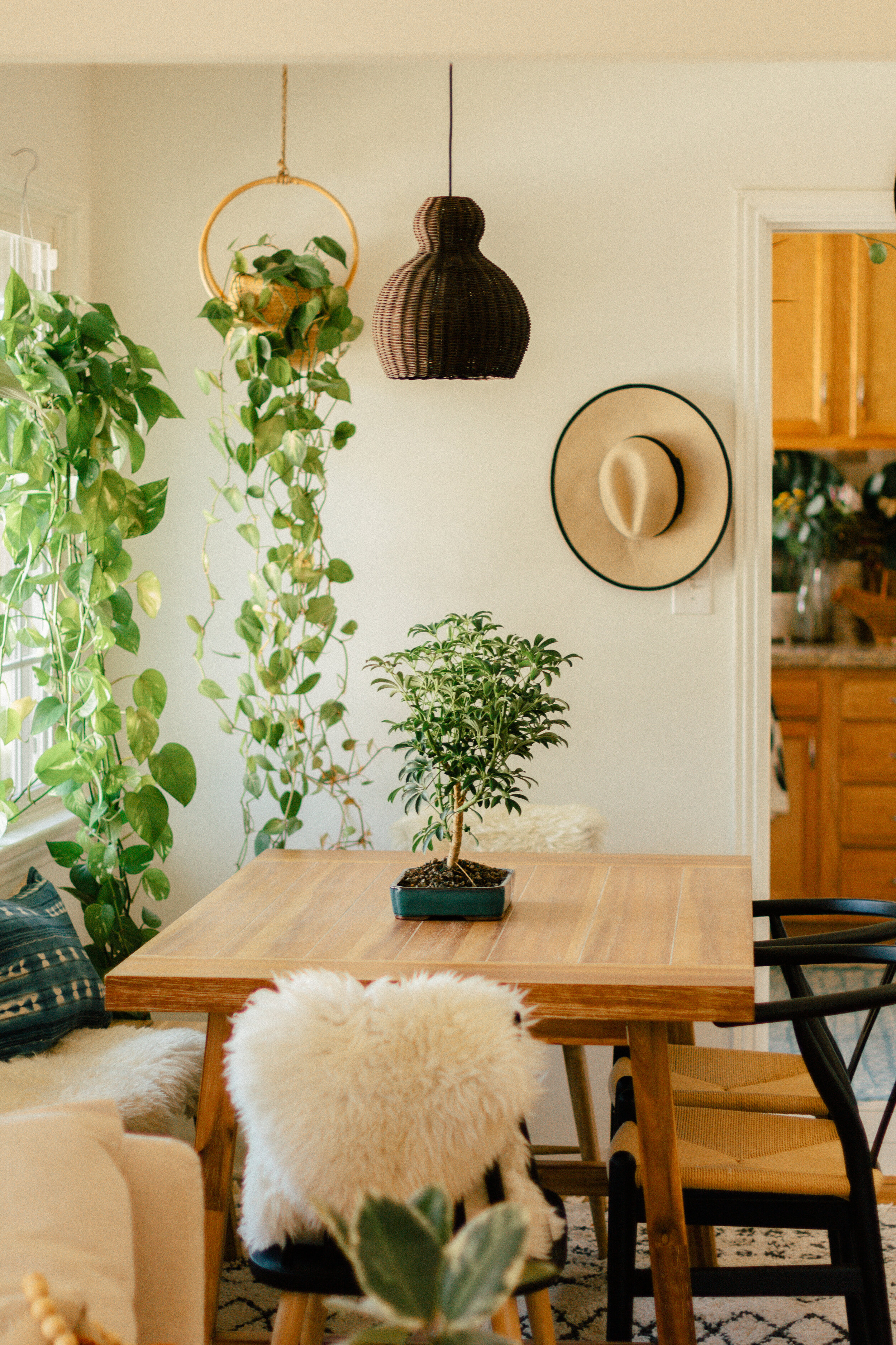 dining room oasis 3
