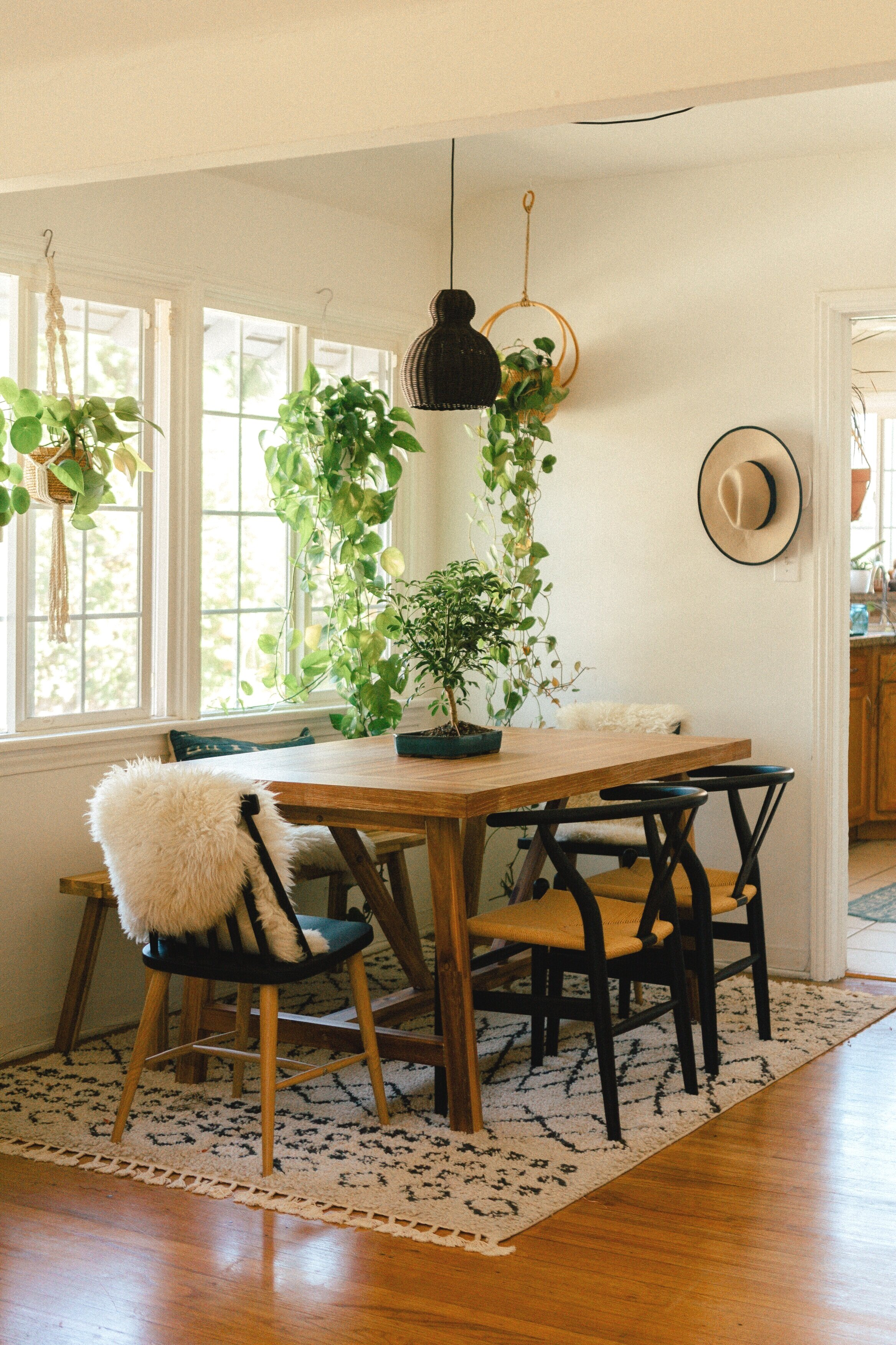 dining room oasis
