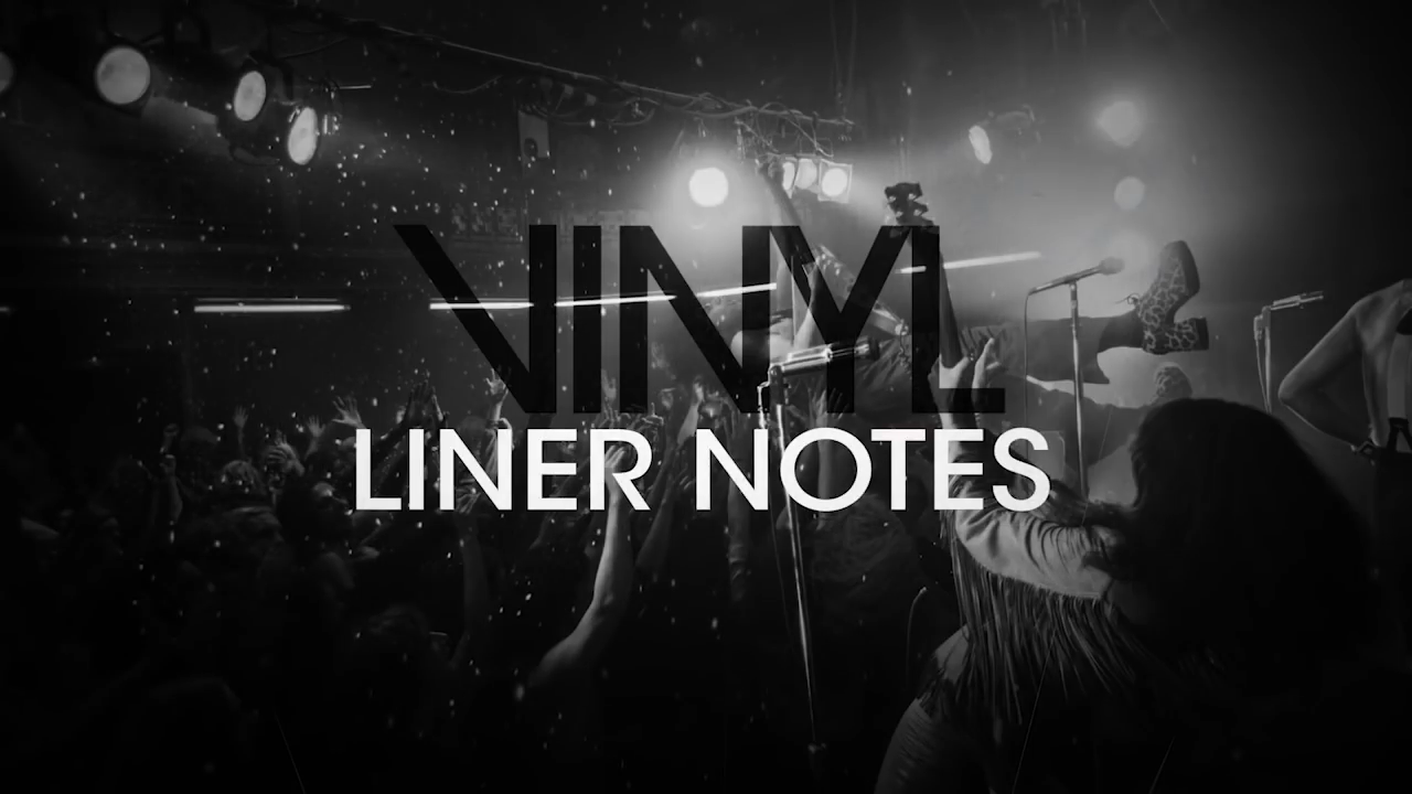 vinyl liner notes.png