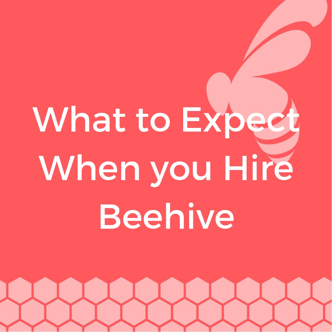 Beehive-Development-blog-What-to-Expect-When-you-Hire-Beehive.jpg