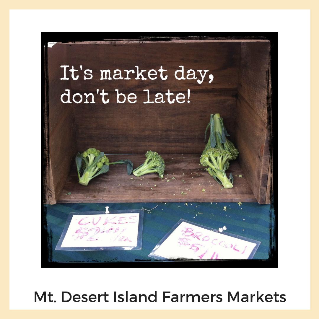 Mount Desert Island Farmers Markets: Bar Harbor's Eden Farmer's Market + Northeast Harbor Farmer's Market. Social Media, Photography + Image Editing