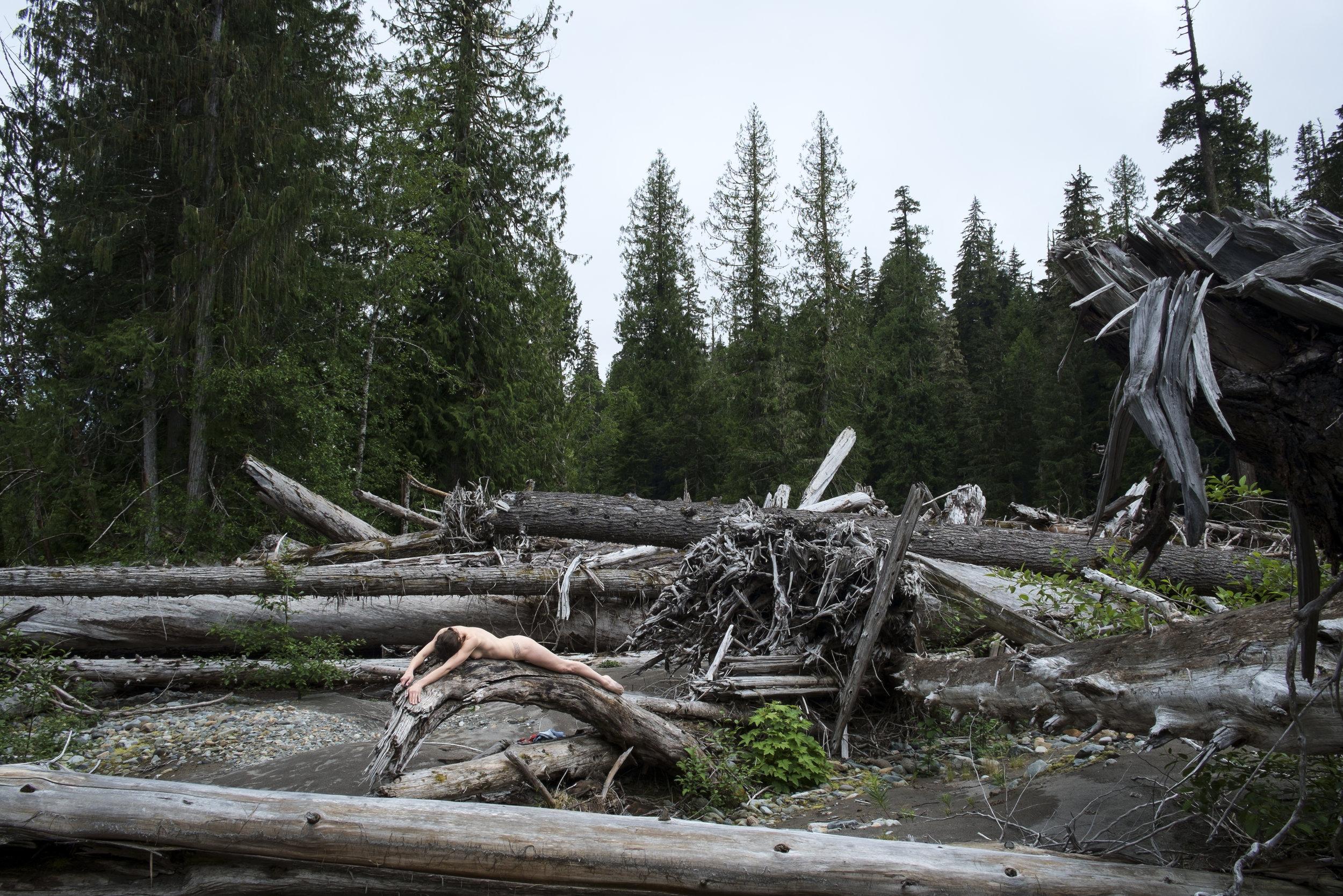 Mount Rainier National Park (2015)