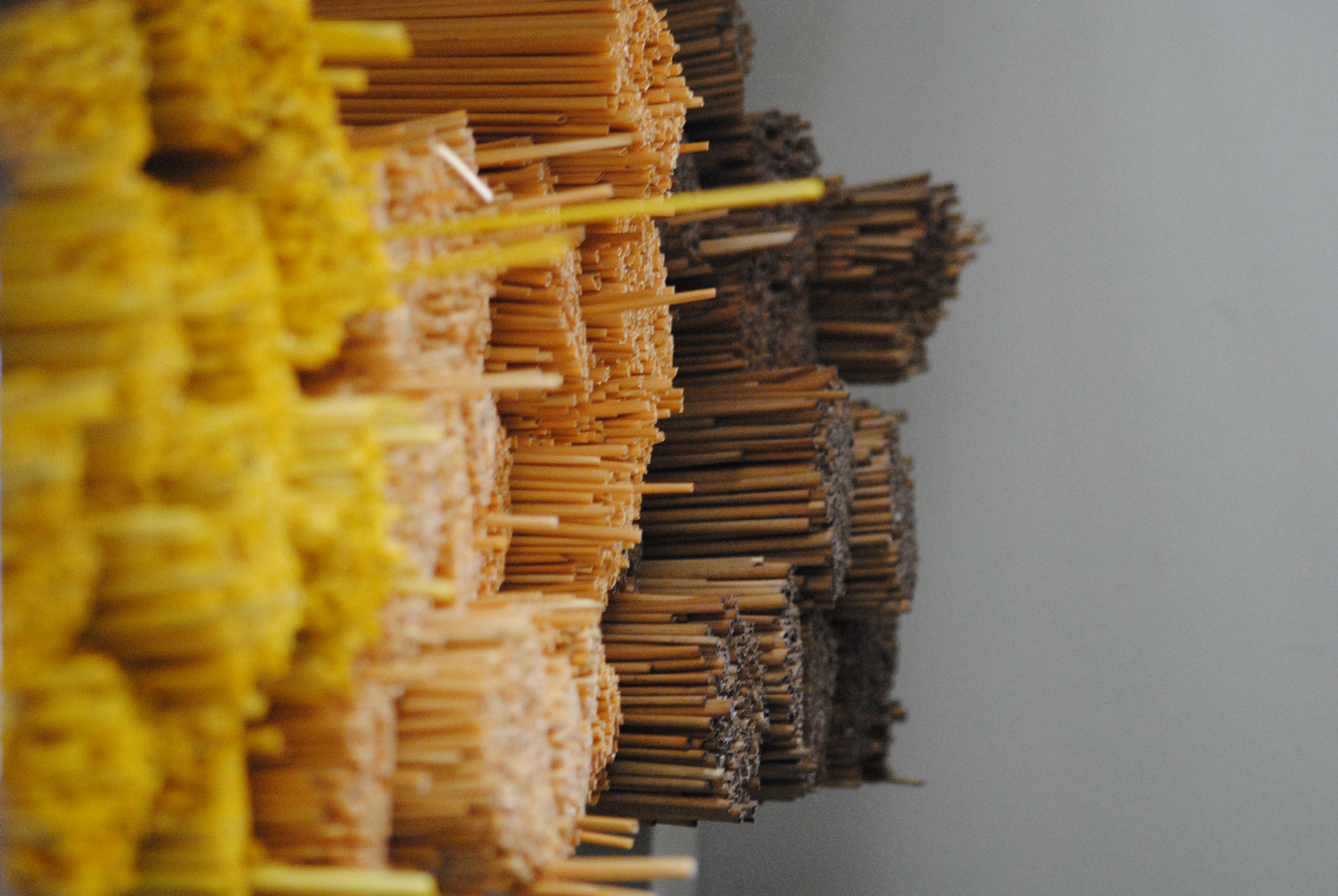 straw-stalks.jpg