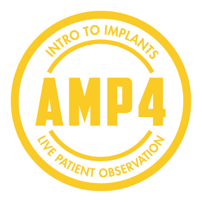 AMP-amp4_icon(g).png