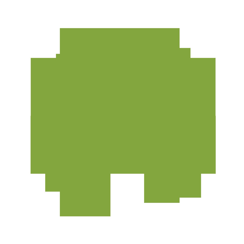 OhanaHealth Internship Experience Develop Icon