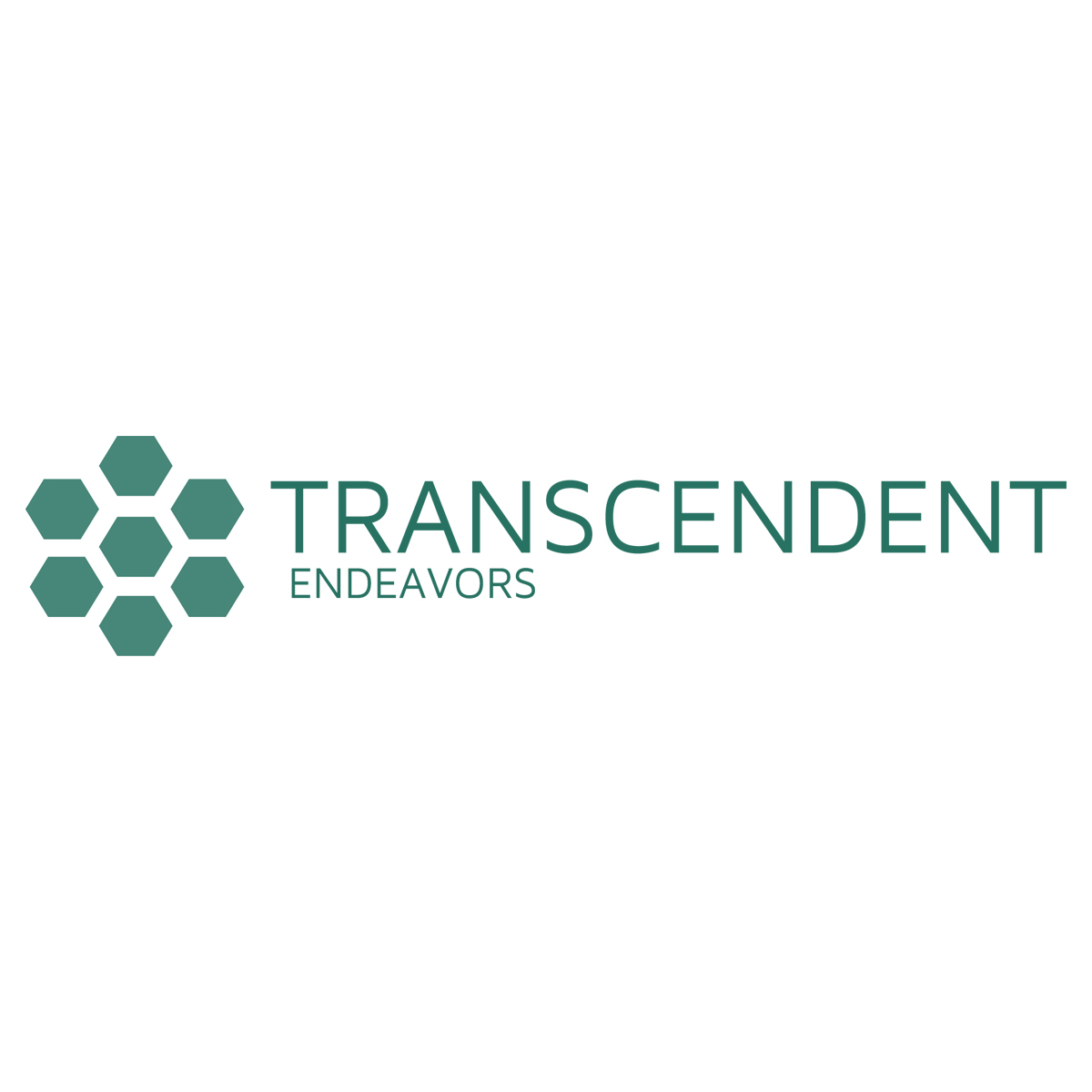 Transcendent Endeavors   Dedicated to improving the quality of life for underserved communities, and supporting the important work of the professionals and organizations that serve them.    Learn More →