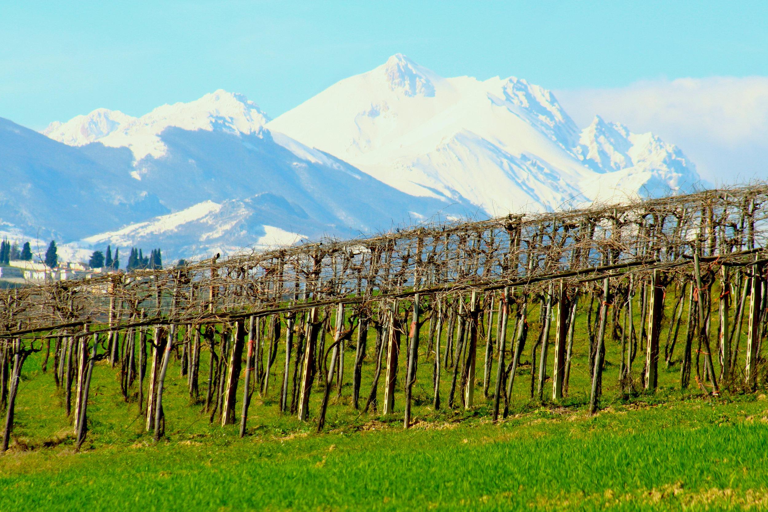 Apennine Mountains_Photo by Jen Laskey.jpg