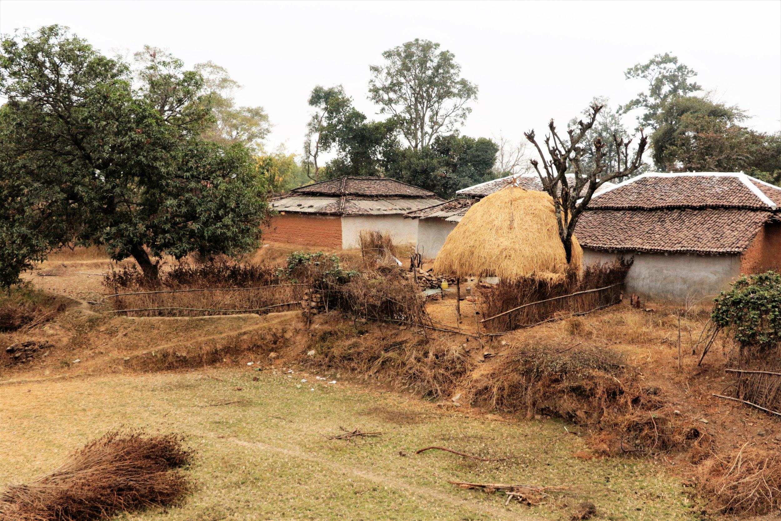 Village from train.JPG