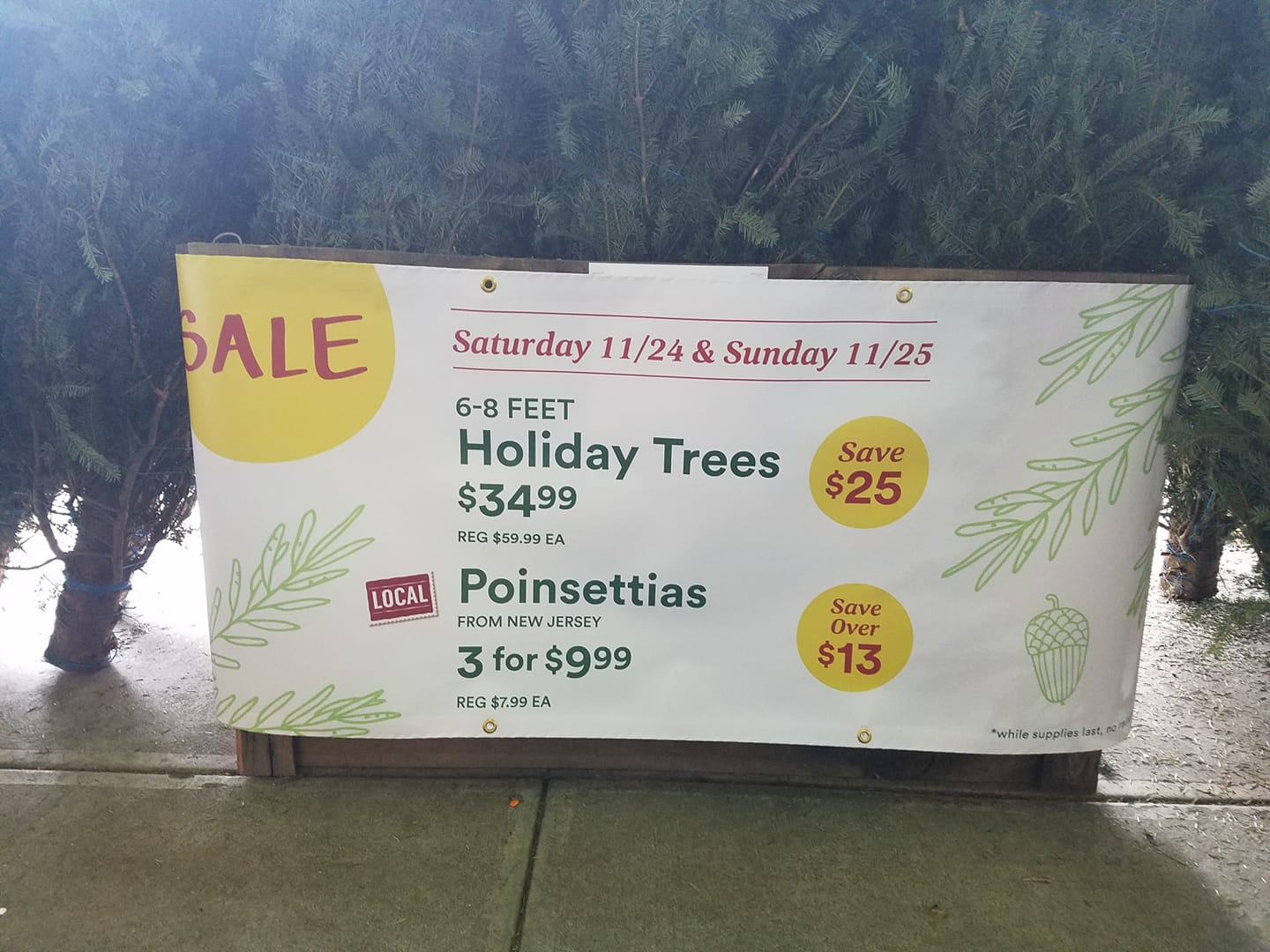 WholeFoodsChristmasTree.jpg